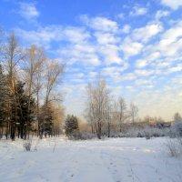 Однажды , зимним днём . :: Мила Бовкун
