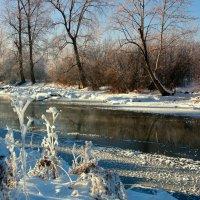 У реки наряд парчовый... :: Нэля Лысенко