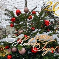 Доброго Нового Года! :: GALINA