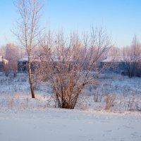 Утро! -29 Сибирь :: Вадим Басов