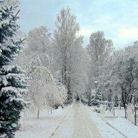 Один день в декабре :: Сергей Карачин