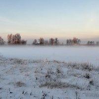 Нежное утро.. :: Регина Волгина