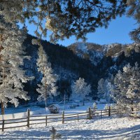 Зима на Синем плёсе. :: Валерий Медведев