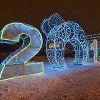 С наступающим Новым годом! :: Наталья Левина