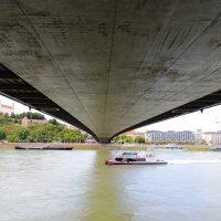 Под мостом :: Гала