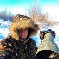 фото охота :: Валерий Шурмиль
