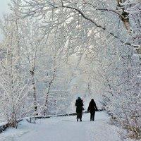 В первый день нового года... :: Екатерина Торганская