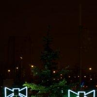 Новогодние праздники :: Роман Белых