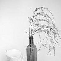 Белые чашки для всей семьи. :: Alla Shapochnik