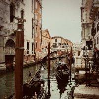 Венеция :: Любовь Гайшина
