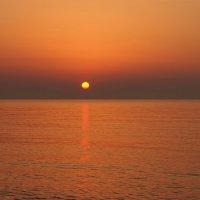 Встречая утро цвета янтаря :: Swetlana V