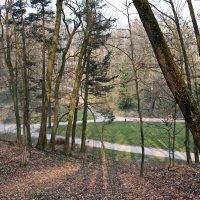 Утро в Стрыйском парке... :: Любовь С.