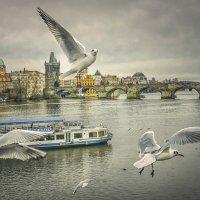 Прага :: Александр Бойко