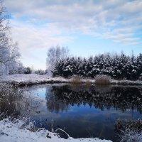 Зима нежданчиком явилась... :: Инга Энгель
