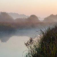 Туманным утром 2 :: Юрий Морозов
