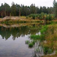 Осень. :: Юрий Шувалов