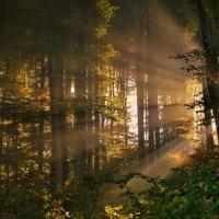 sunrise :: Elena Wymann