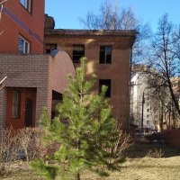 Старый дом :: Марина Кушнарева