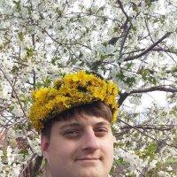 весна пришла :: вячеслав коломойцев