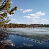 Весна на Щучьем озере :: Roman PETROV
