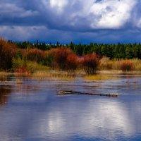 По реке плывет бревно из села Кукуево... :: Михаил *******