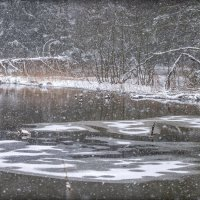 Снегопад. :: Ник Васильев