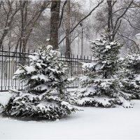 У природы нет плохой погоды... :: Людмила Фил