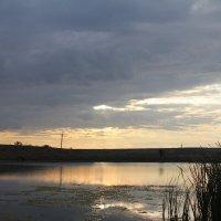 Вечернее озеро. :: Валерий