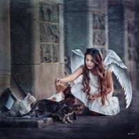 Вариация на тему Питерского ангела ) :: Валерий Фролов