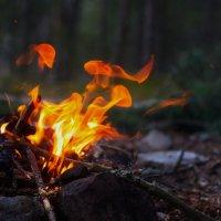 Танец огня :: Юлия Стальнова