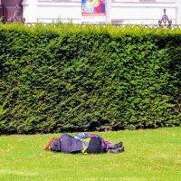 Не все выдерживают трудовые будни ) перед Бельведером женщина приснула в 11.35 :: Вячеслав Случившийся