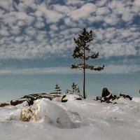Белое море. Кий остров. :: Валентин Кузьмин