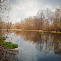 природа апреля :: Настасья