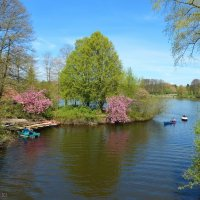 Stadtpark Hamburg :: Nina Yudicheva