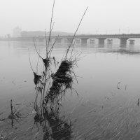Вода уходит... :: Валерий Михмель
