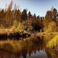 весна :: Юлия Стальнова