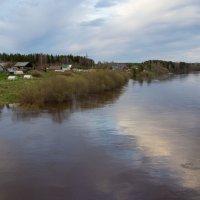 Река Виледь. :: Андрей Дурапов