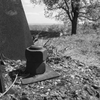 Черно-белая прогулка :: Валерий Михмель