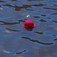 Плыла, качалась шляпка ... :: Александр