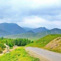 Дорога в горы :: Юрий Владимирович