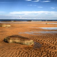 Балтийский берег :: Cергей Кочнев