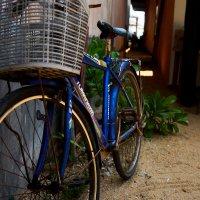 Велосипед :: Sasha K