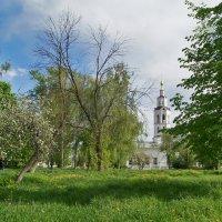 Вид из парка на Богоявленский собор (г Орёл) :: Елена Кирьянова