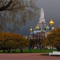 My magic Petersburg_03631_Марсово Поле с видом на Спас на крови :: Станислав Лебединский