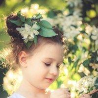 Яблоневый цвет :: МАРИНА КОМИНА