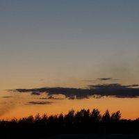 Бродячее облако :: Елена Минина