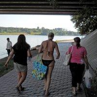 Вид из под Борисовского моста. Борисовские пруды. :: Александр Качалин