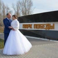 Свадьбы :: Алексей Фотограф Михайловка