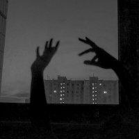 Руки :: Мария Кружалина
