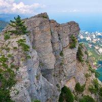 Каменный страж Южного берега :: Андрей Козлов